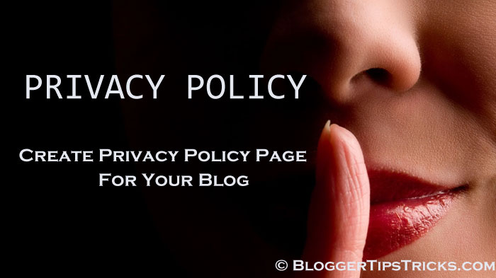 Blogger Privacy Policy Page