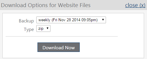 download options for website files