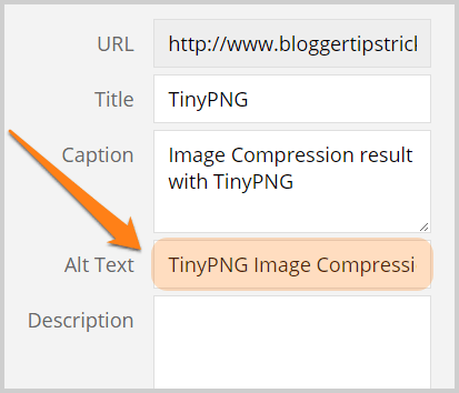 image alt text example