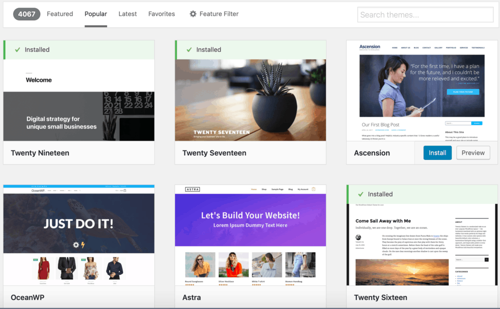 WordPress Duyarlı Temalar