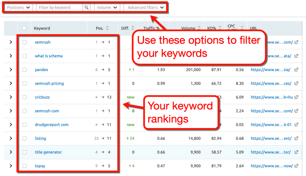 How to Use SEMrush Keyword Filters