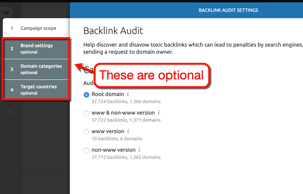 Backlink Audit Settings Optional