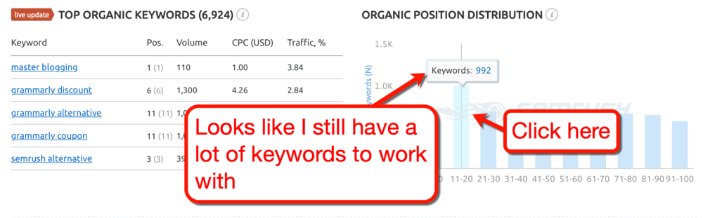 Top Organic Keywords Page Two
