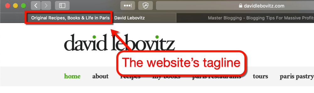 David Lebovitz Website Tagline