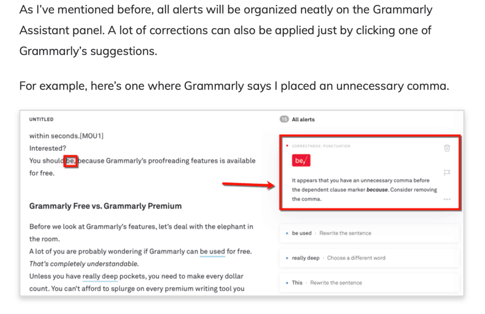 Grammarly Review Instructions