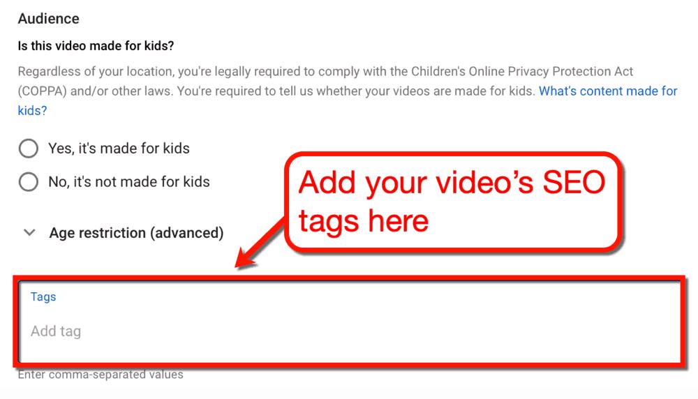 Add Video SEO Tags