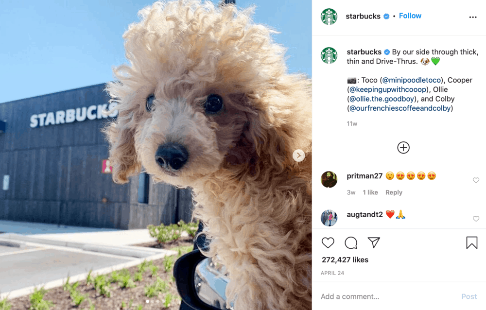 Starbucks on Instagram