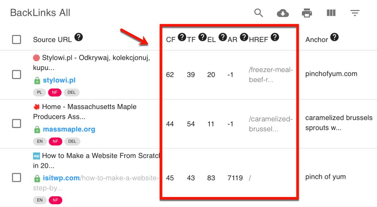 Referring Domains Metrics