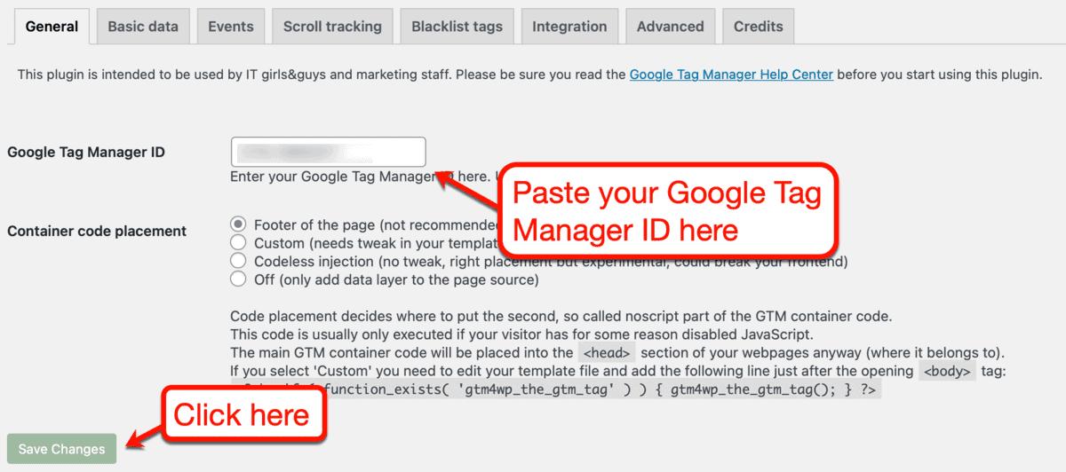 Google Tag Manager Plugin Settings