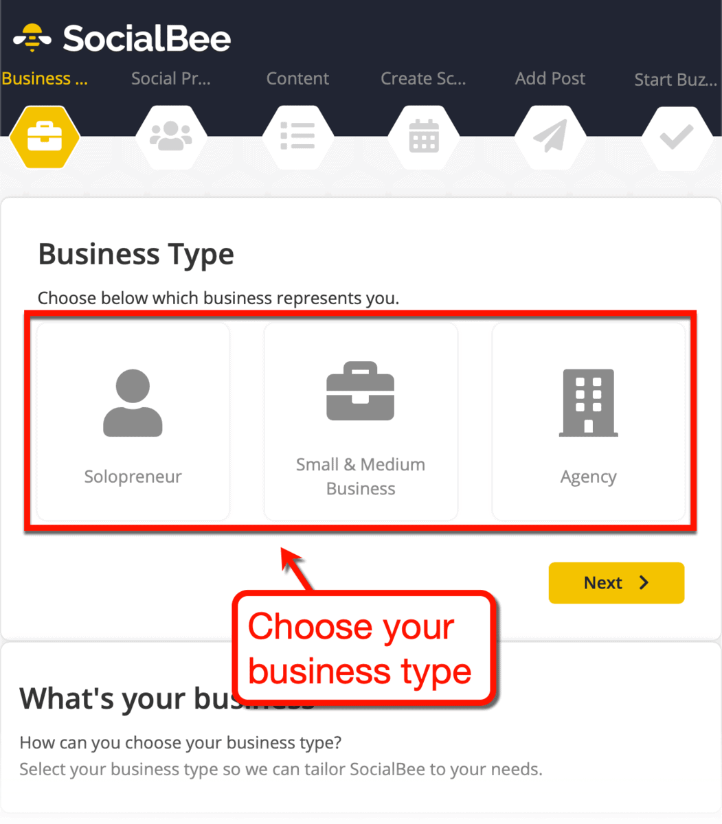 SocialBee Business Type